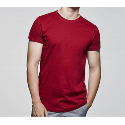 CAMISETA COLOR ROLY